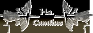 Hostal Camiluz - Nasca